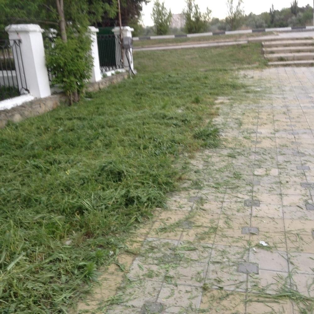 Вдоль Анапки скосили траву, но, так, что лучше бы не косили