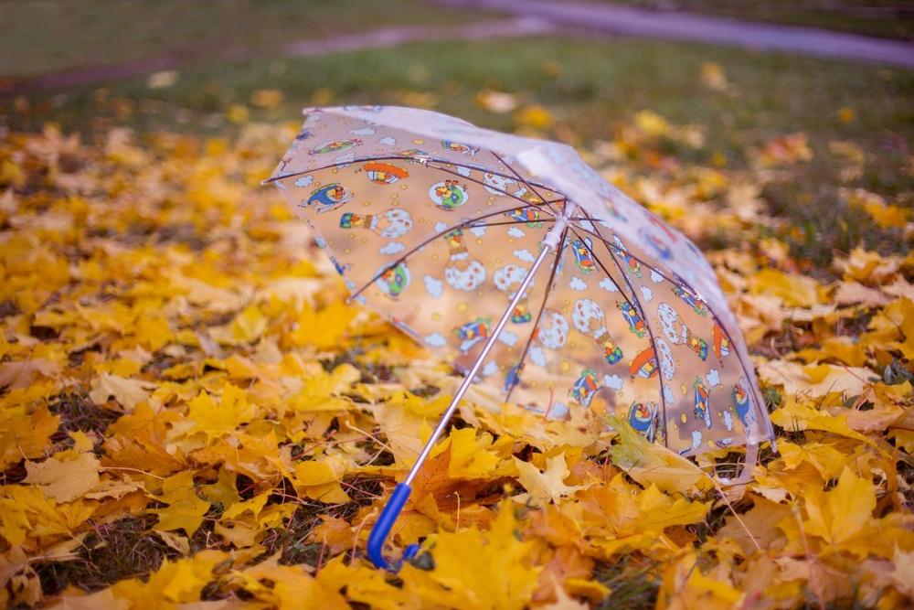 Сегодня, 18 сентября, в Анапе синоптики прогнозируют небольшой дождь