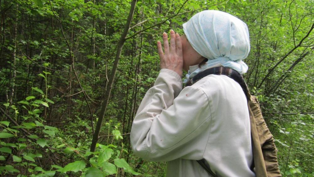 Анапские спасатели помогли найти пенсионерку, которая заблудилась в лесу