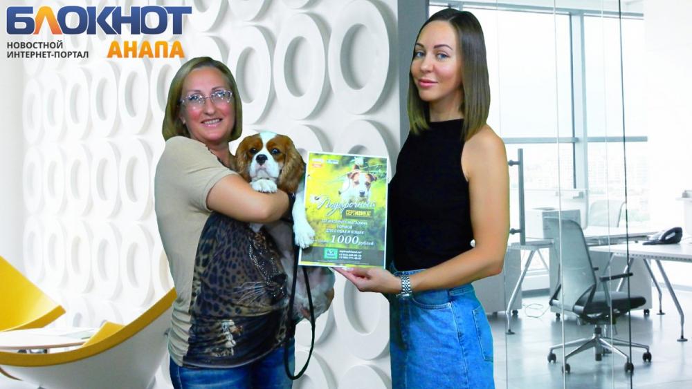 Победитель конкурса «Блокнот Анапа» помог бездомным животным