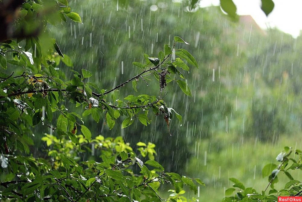 Сегодня, 24 мая, в Анапе ожидается дождь