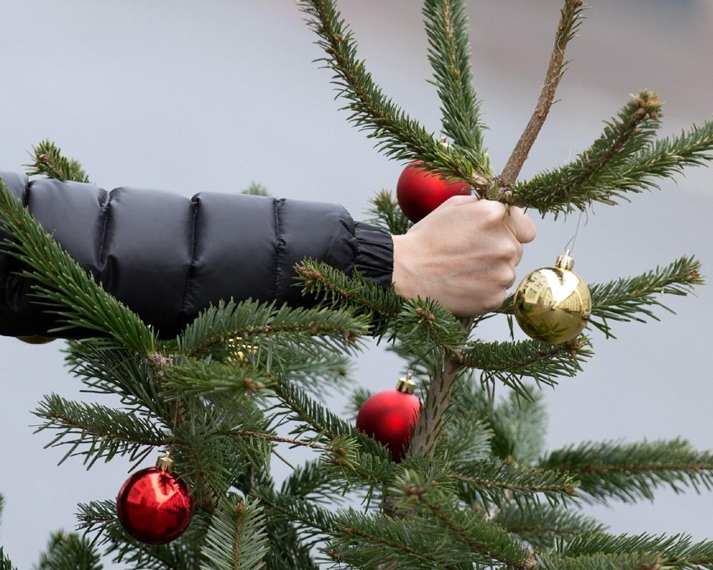 Когда лучше всего убирать новогоднюю ёлку: советы анапчанам