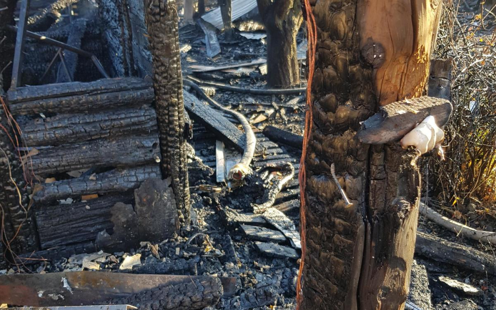 По всей Кубани горят леса, введён режим повышенной опасности: Анапа в списке