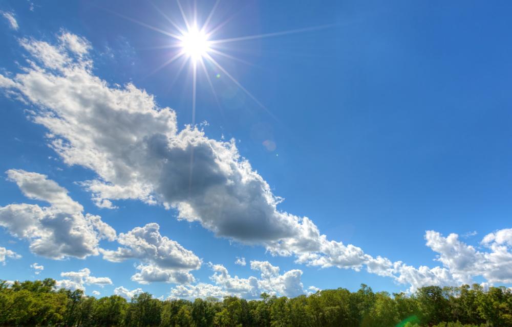 14 мая в Анапе ясно и солнечно