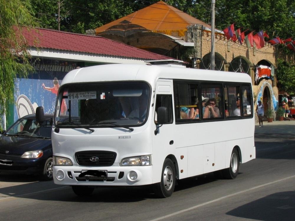Анапчанин нашёл способ разгрузить автобусы, которые едут в с. Витязево