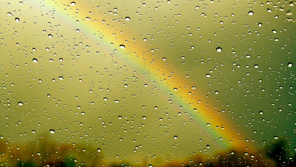 Сегодня, в воскресенье, в Анапе целый день будет лить дождь
