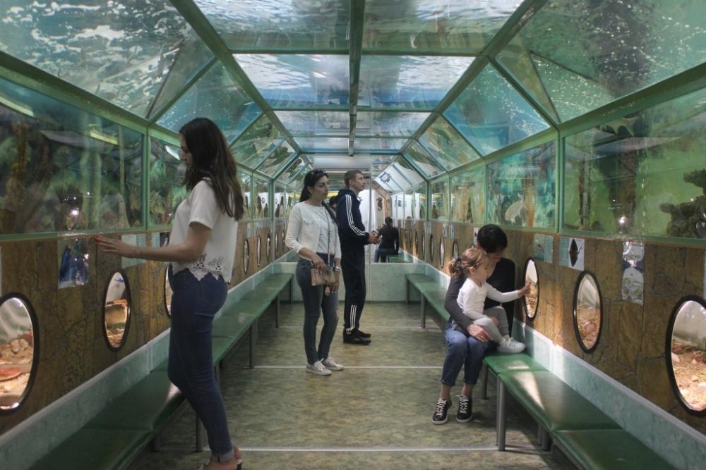 Погрузись в подводный мир тоннельного аквариума «Батискаф»