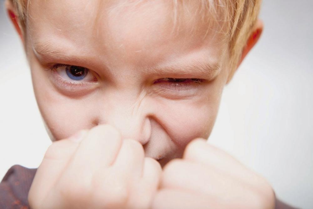 Как справиться с детской агрессией? Комментирует директор школы в Супсехе под Анапой