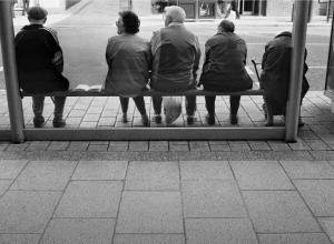 «Маршрутчики не замечают пассажиров из-за кустарников» - пенсионерка рассказала о заросшей остановке в Анапе