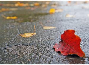 Сегодня, 7 ноября, в Анапе облачно и прохладно