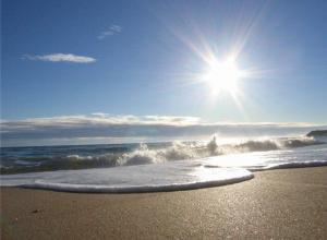 «Сделать пляжи Анапы лучшими в стране»: мэр обозначил главную задачу при подготовке к сезону