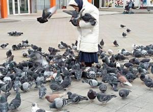Фотофакт: бабушка «в голубях» на Театральной площади в Анапе