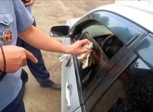 Анапских водителей за тонировку могут арестовать на 15 суток