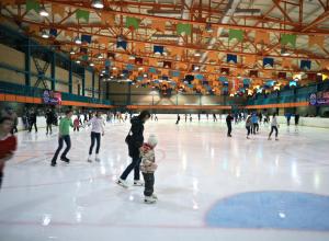 Анапчанка предлагает построить в городе крытый ледовый комплекс для хоккея и катания на коньках