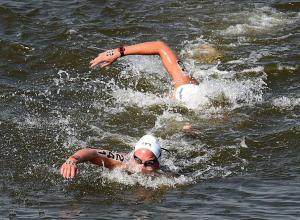 В Анапе проведут чемпионат России-2018 по плаванию на открытой воде