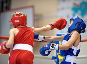 Сборная России по боксу одержала победу на первенстве Европы, проходившем в Анапе