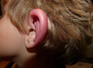 Шестилетнему ребенку пригрозила оторвать уши воспитатель детского сада Анапы