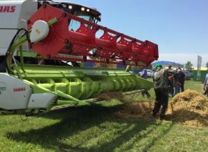 8-10 июня в Ялте пройдет Международная выставка сельхозтоваропроизводителей