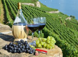 В Анапе пройдёт апрельский форум виноделов