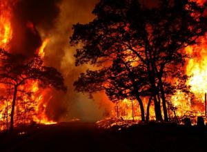 В Анапе сохраняется режим чрезвычайной пожароопасности