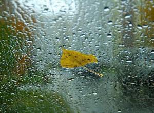 Сегодня, 14 сентября, в Анапе целый день будет идти дождь
