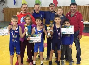 Анапский борец Мурад Рашидов вернулся из Брюховецкой с золотой медалью