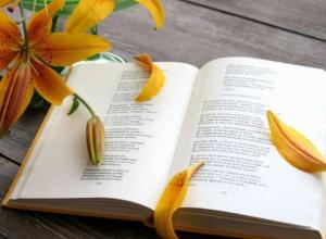 Анапчане смогут принять участие в фестивале, посвящённому Всемирному Дню Поэзии