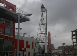 Анапчане считают, что ёлку возле «Красной площади» устанавливают поздно