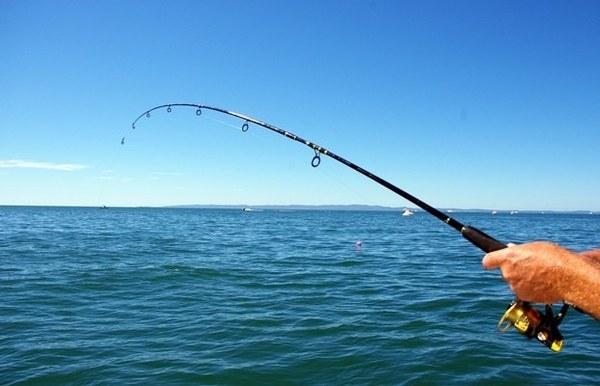 В Анапе обычная рыбалка может обернуться смертью: знаете, почему?