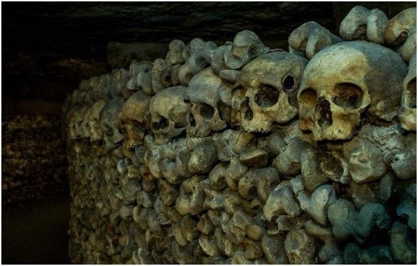 История Анапы: за стенами Горгиппии находился «город мертвых»