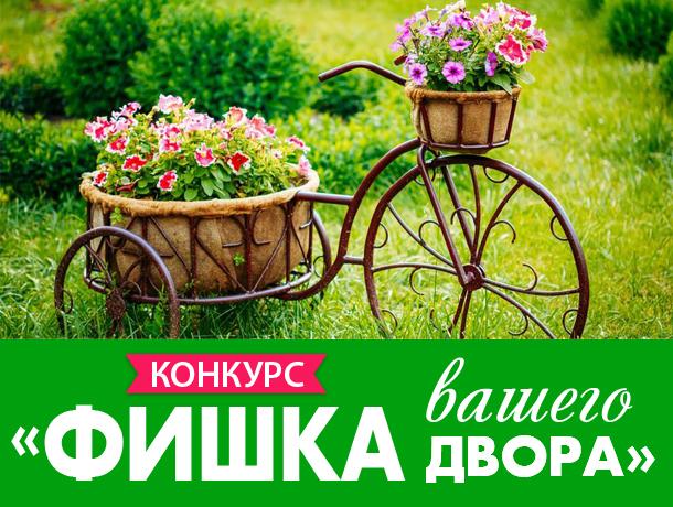 Новый конкурс информационного портала Блокнот Анапа - «Фишка вашего двора»