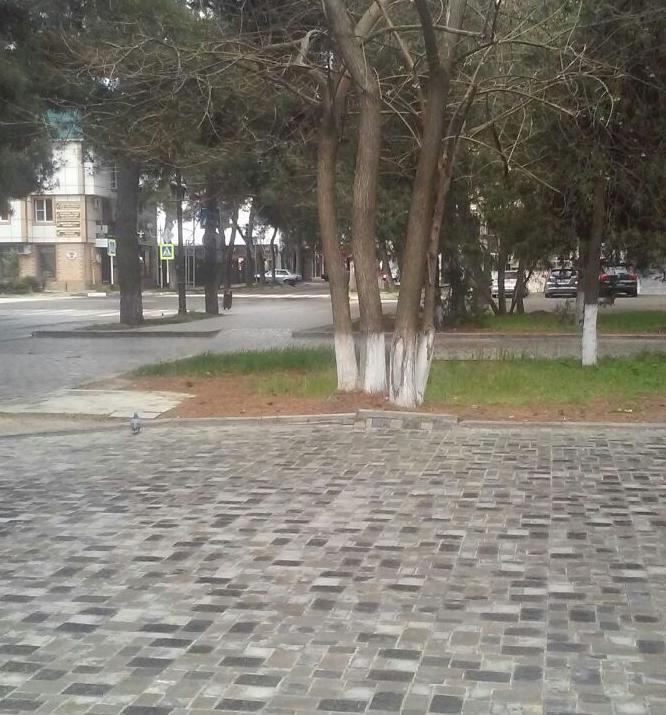 Анапчанка считает, что участок улицы Ленина без автомобилей был бы гораздо красивее