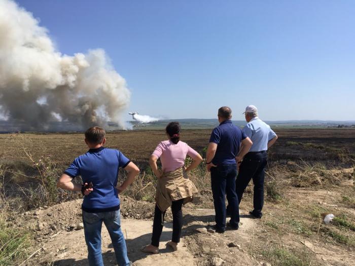 Причиной пожара в анапских плавнях стало сжигание мусора
