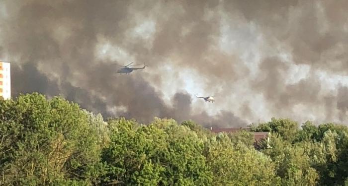 Два вертолета тушат анапские плавни с утра, ожидается самолет из Геленджика Бе-200