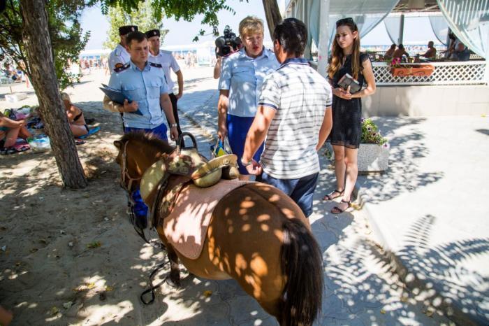 Рейд по улицам Анапы выявил нелегальных фотографов с экзотическими животными
