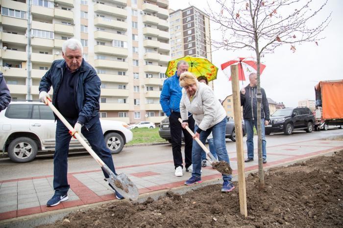 К озеленению сквера на бульваре Евскина приложил руку мэр Анапы