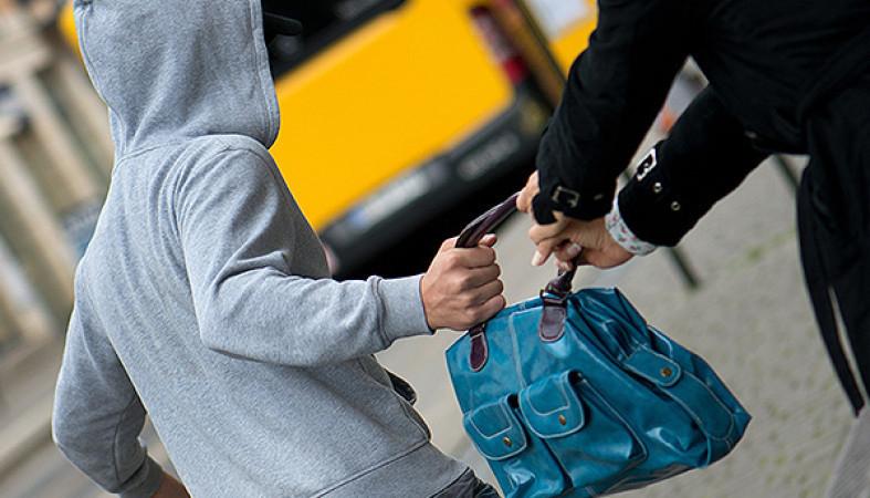 В Анапе злоумышленники украли у пенсионерки сумку с кормами для животных