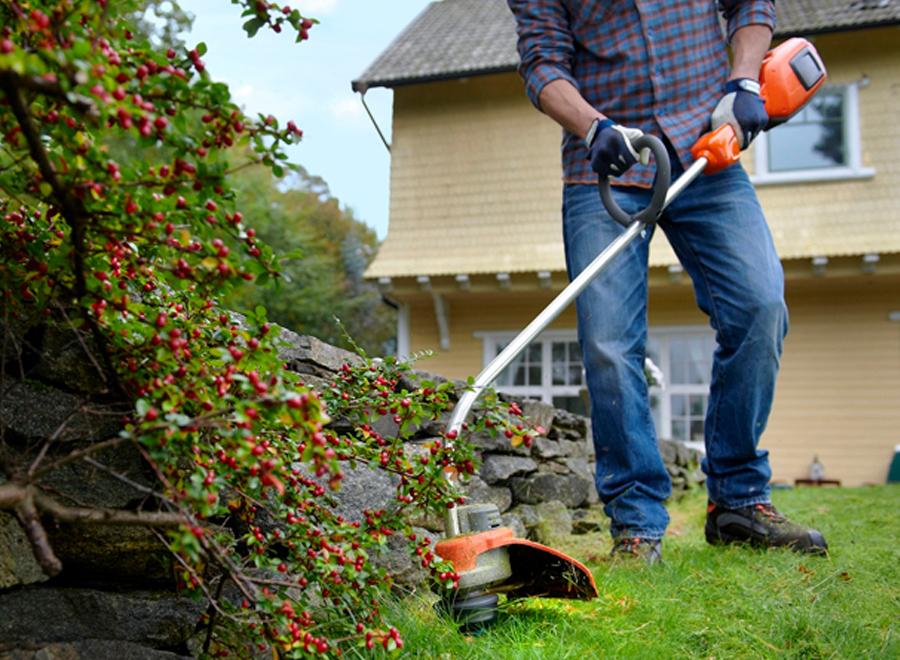 Нужны услуги садовника? Заходи в справочник!