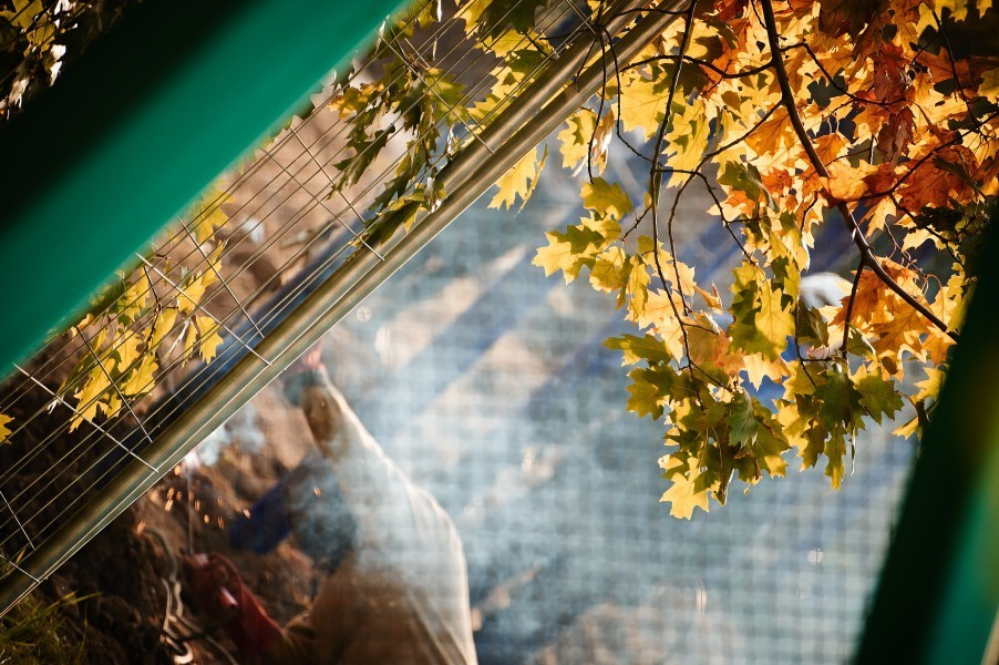 Сегодня, 14 ноября, в Анапе потеплеет