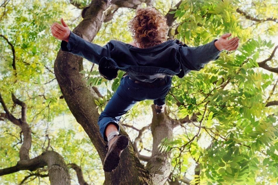 В Сукко под Анапой мальчик упал с дерева на торчащую из земли ветку