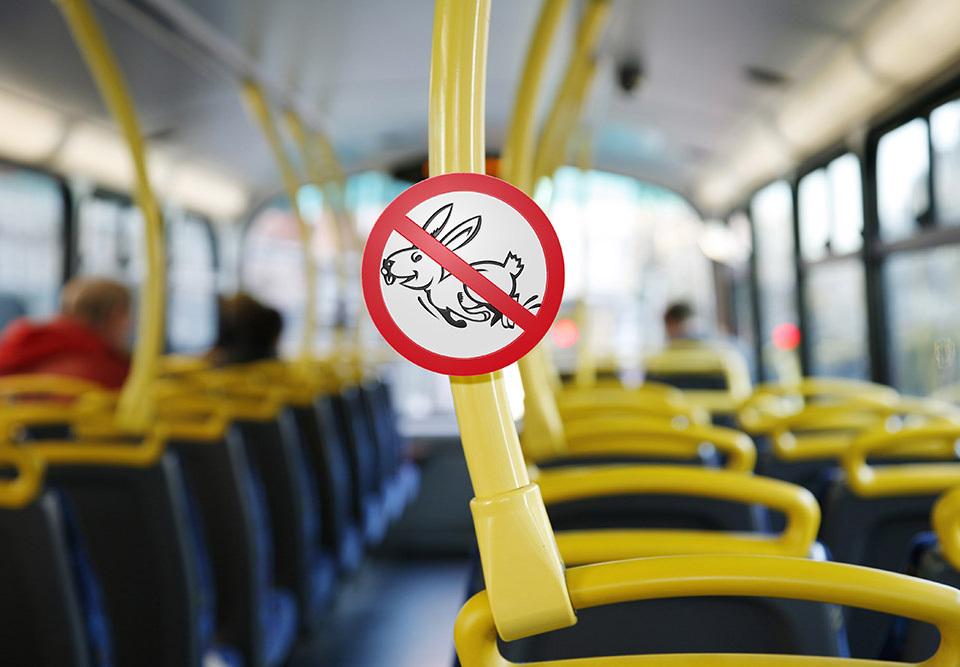Водитель автобуса в Анапе предложил свой метод борьбы с «зайцами»