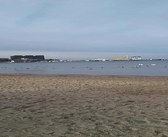 По сравнению с прошлой зимой пляж в Анапе стал заметно чище