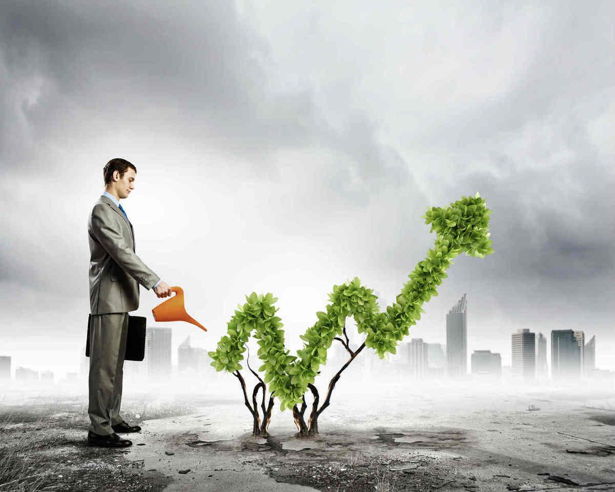 Сколько денег вкладывают в Анапу инвесторы?