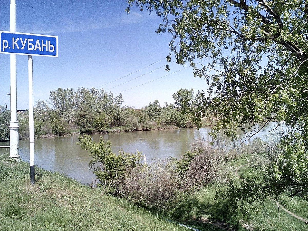 Опасная дамба на реке Кубань угрожает Анапе наводнением