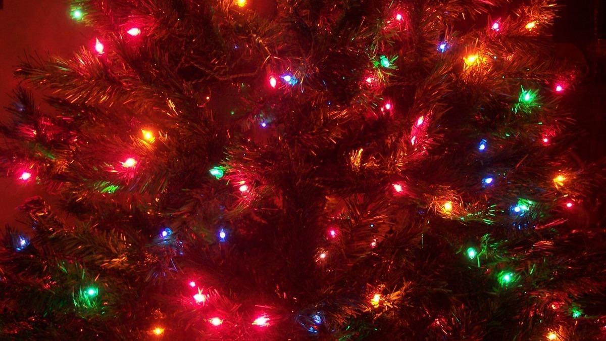 Где в Анапе посмотреть на огни первой новогодней ёлки?