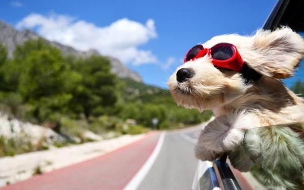 Новая неделя в Анапе начнется с приятной погодки