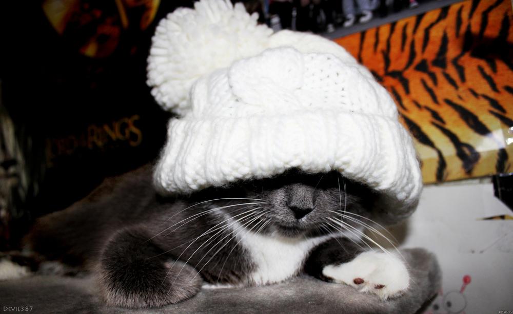 11 января в Анапе будет холодно и пасмурно: синоптики советуют одеваться теплее