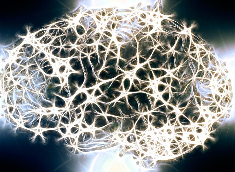 Не верите, что развивать мозг можно и в зрелом возрасте? Поверьте справочнику!